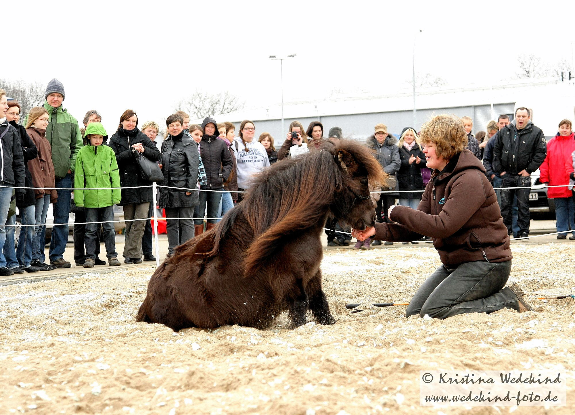 Mikey bei der Eröffnungsfeier vom Krämer Pferdesportversandhaus