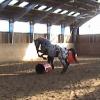 2008 Sando Spiel uns Spaß in Klecken